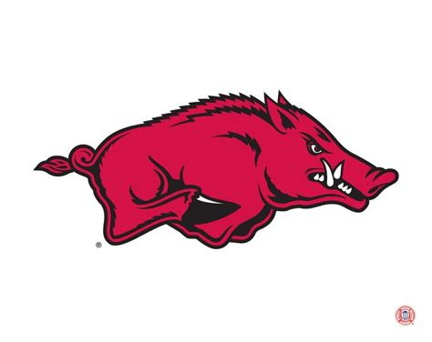 Arkansas Razorbacks mascot logo | College Sports
