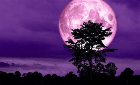 Witness the 'Super Pink Moon' in Malaysia This Week