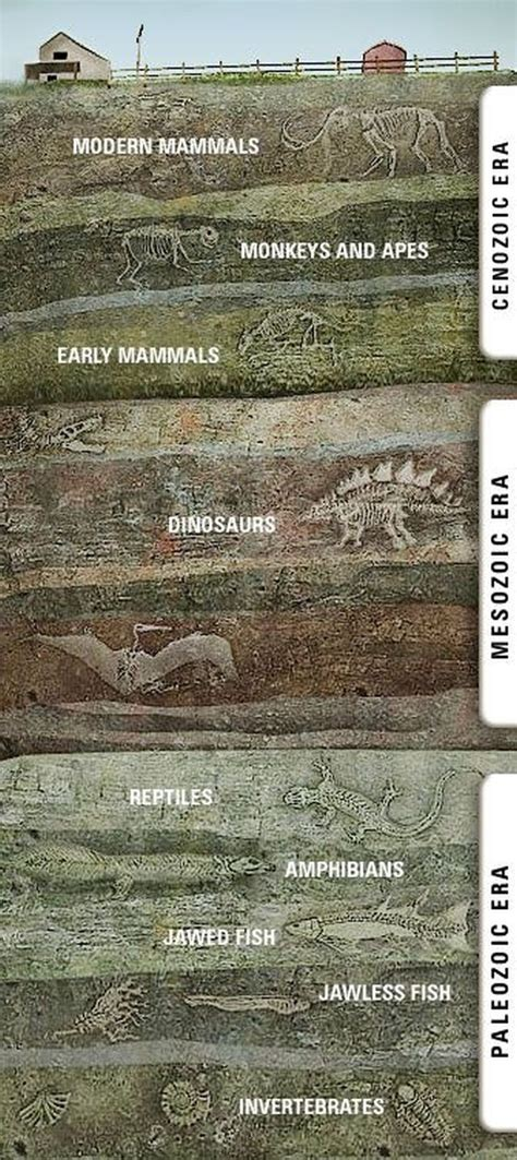 What's Under You (Fossilistically) - Earthly Mission