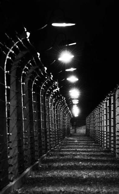 Auschwitz fence at night   A picture of Auschwitz fence at